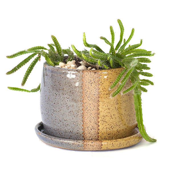 Glazed Stoneware Planter