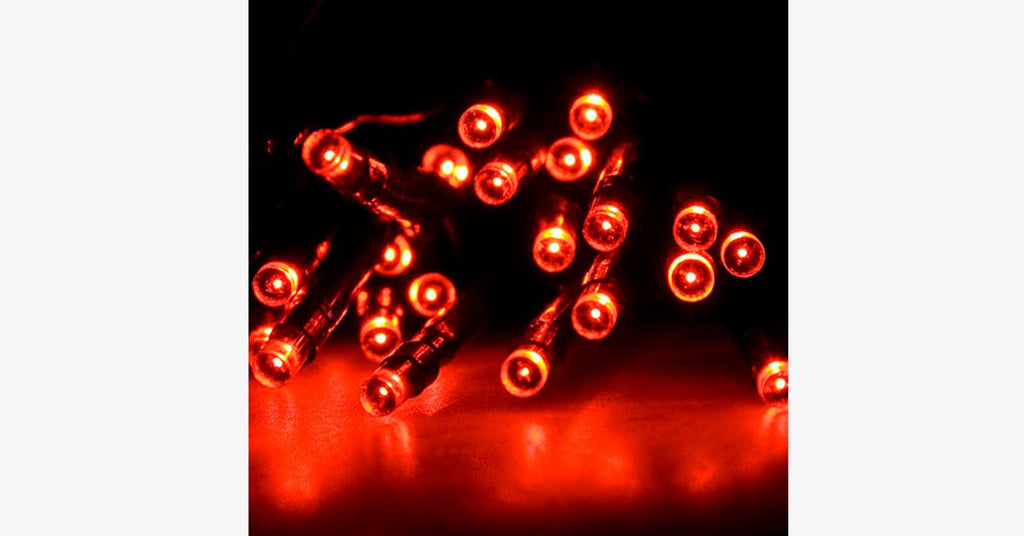 LED Fairy Lights – Decorate With Stylish Lights! - BFCM