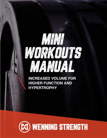 Mini-Workout Manual Training Manual Wenning Strength