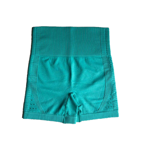 Power Seamless Shorts