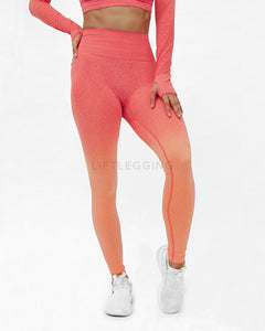 Ombre Seamless <br>Leggings