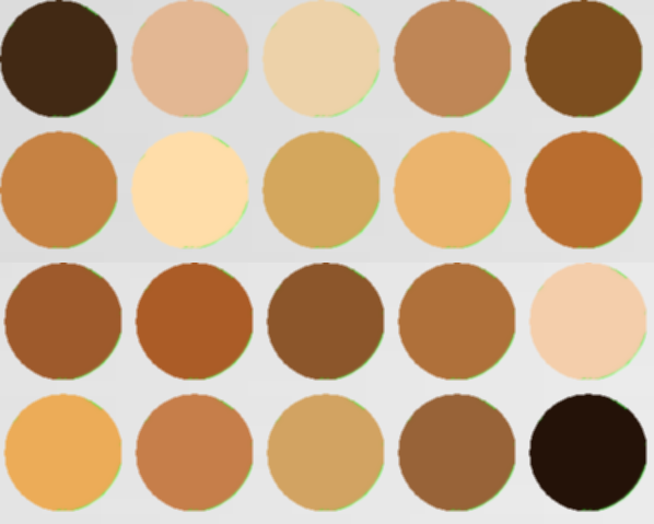 Shade Matching Kit