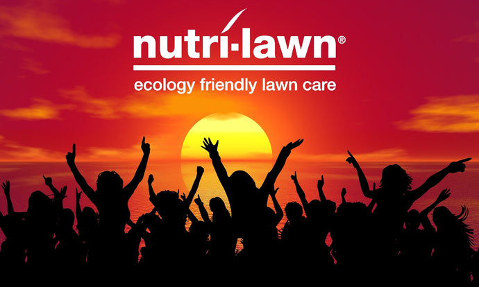 Customer Service vs Client Experience - What's the Nutri-Lawn Vancouver Difference?