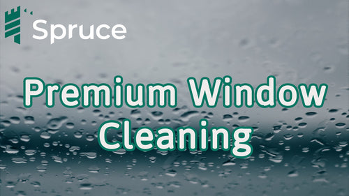 Hand Clean Windows (Premium)