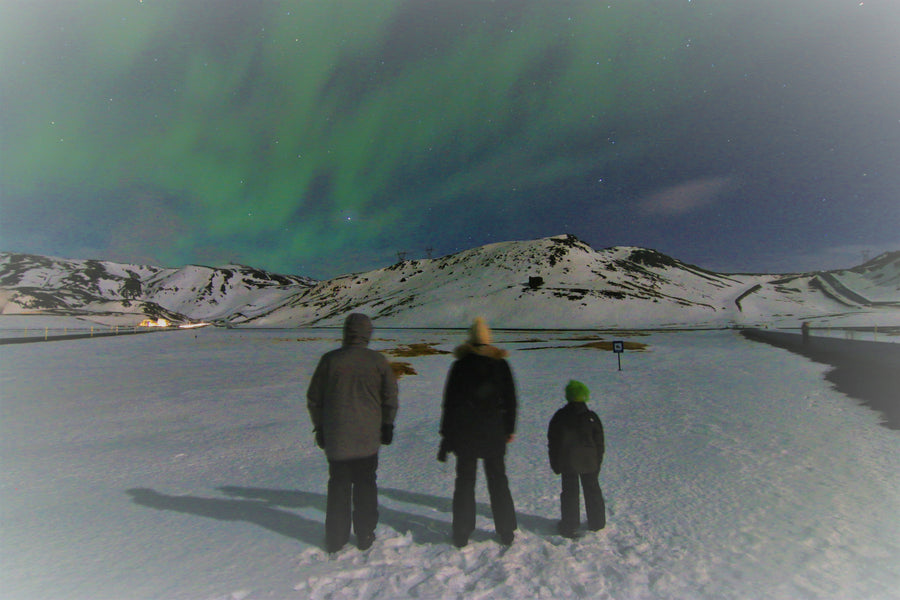 Bucket List Check #20 - Viewing Iceland's Northern Lights