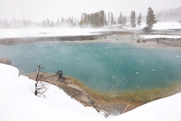 Geyser at Yellowstone National Park in the wintertime