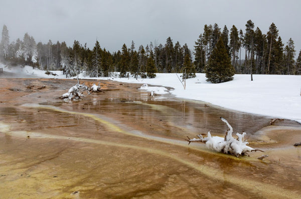 Fire and Ice at Yellowstone National Park