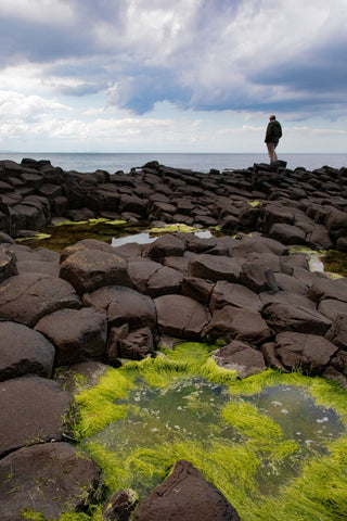 Mike at Giant's Causeway