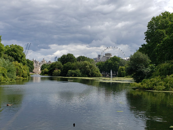 View from St. James' Park