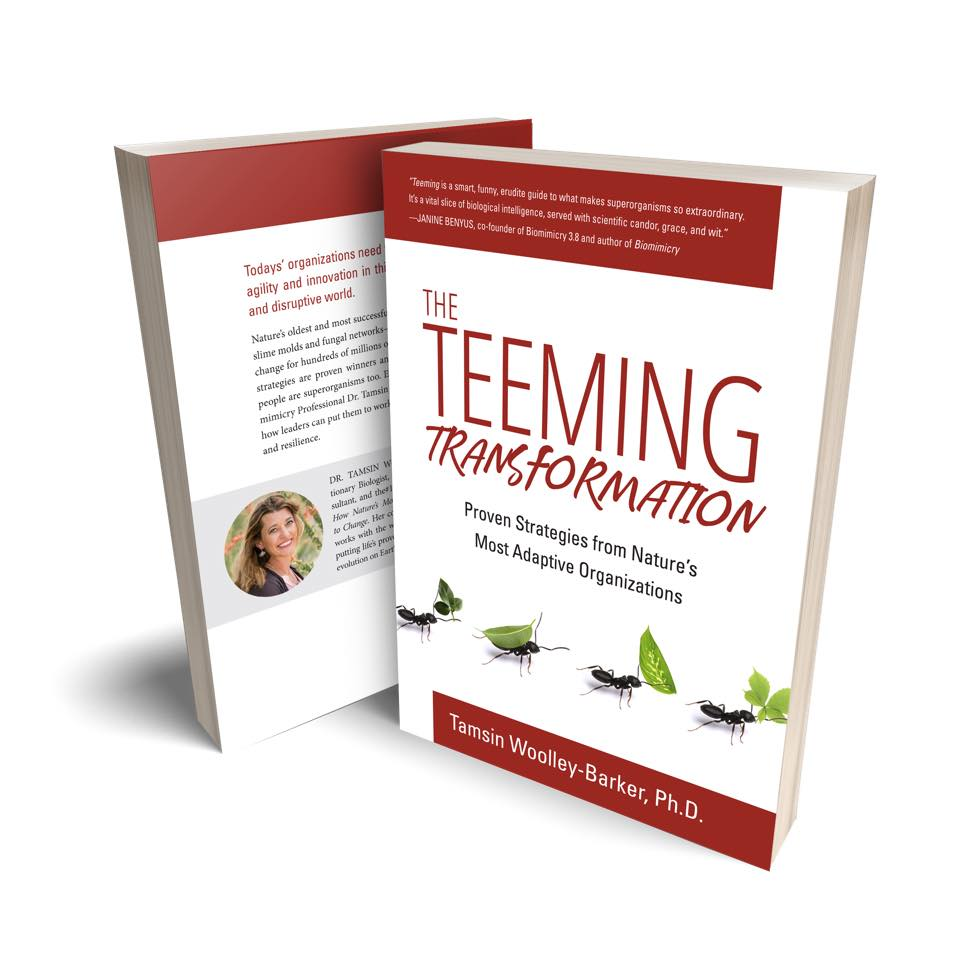 The TEEMING Transformation: Proven Strategies from Nature's Most Adaptive Organizations