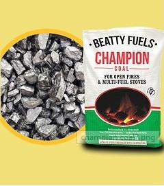 DEAL - Champion 40kg (5 Bags + 2 kindling sticks )
