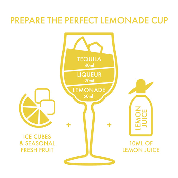 Lemonade Cup DIY Kit