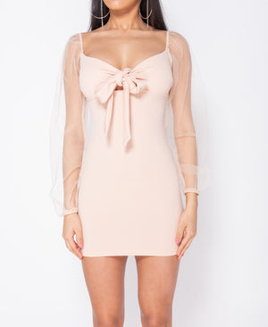 Lovers + Friends Bodycon Mini Dress