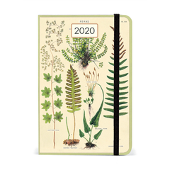 Cavallini & Co. Ferns 2020 Diary