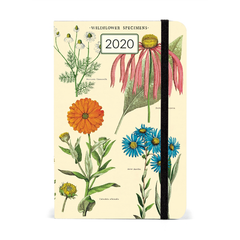 Cavallini & Co. Wildflowers 2020 Diary