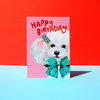 Eleanor Bowmer Happy Birthday Hun Card