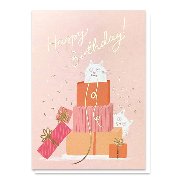 Stormy Knight Purfect Presents Birthday Card