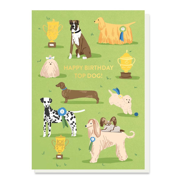 Stormy Knight Top Dog Birthday Card