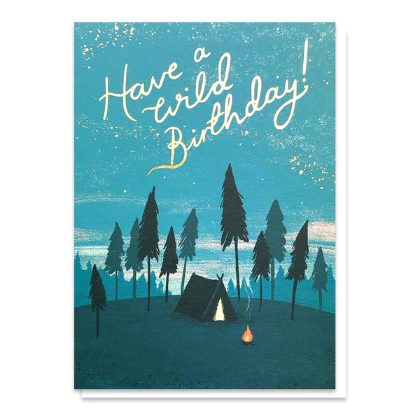 Stormy Knight Wild Birthday Card