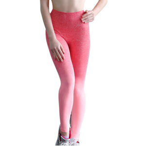 Ombre Dream Pink High Rise Seamless Leggings