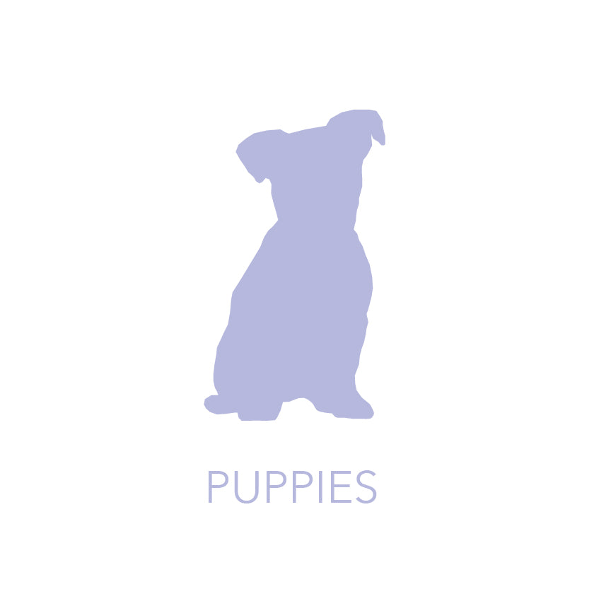 Products for Puppies
