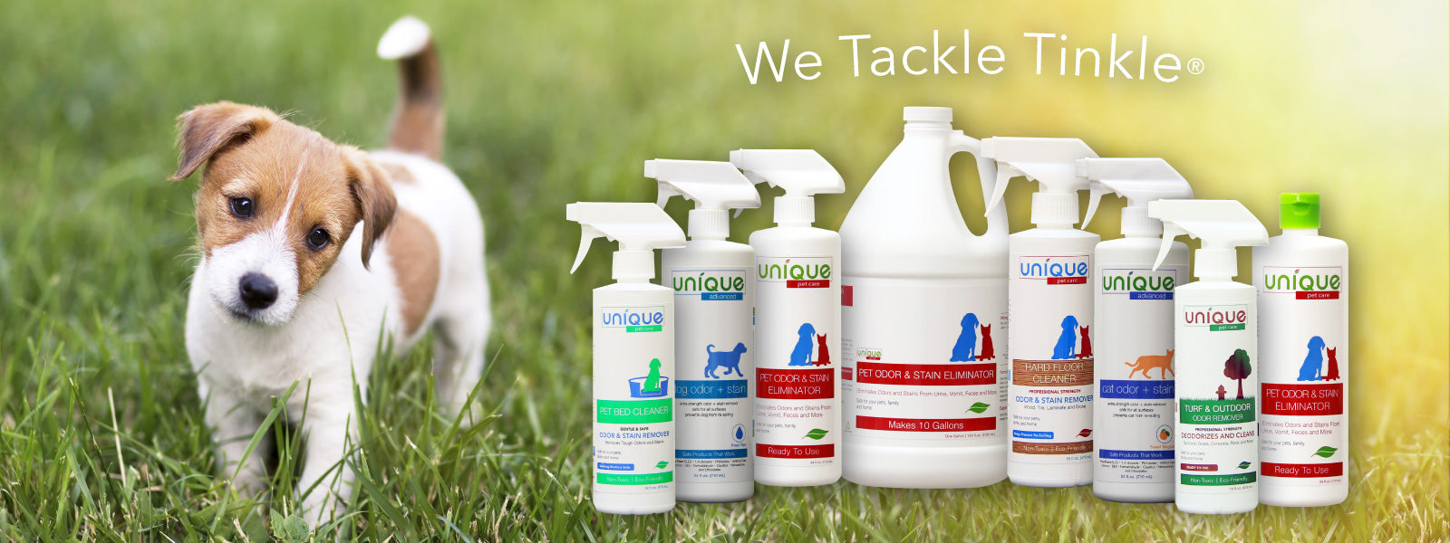We tackle tinkle - Unique Pet Care