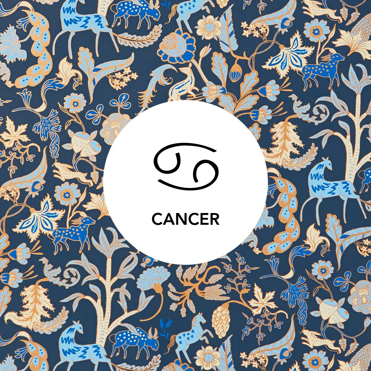 Cancer | Foret Midnight wallpaper | Julia Rothman | Hygge & West