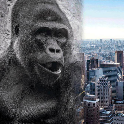 A giant gorilla sculpture is coming to Hudson Yards