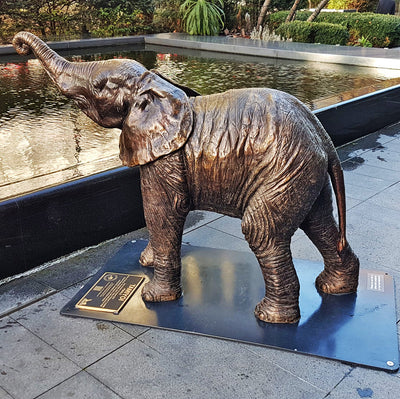 A herd of elephants can be seen in Spitalfields