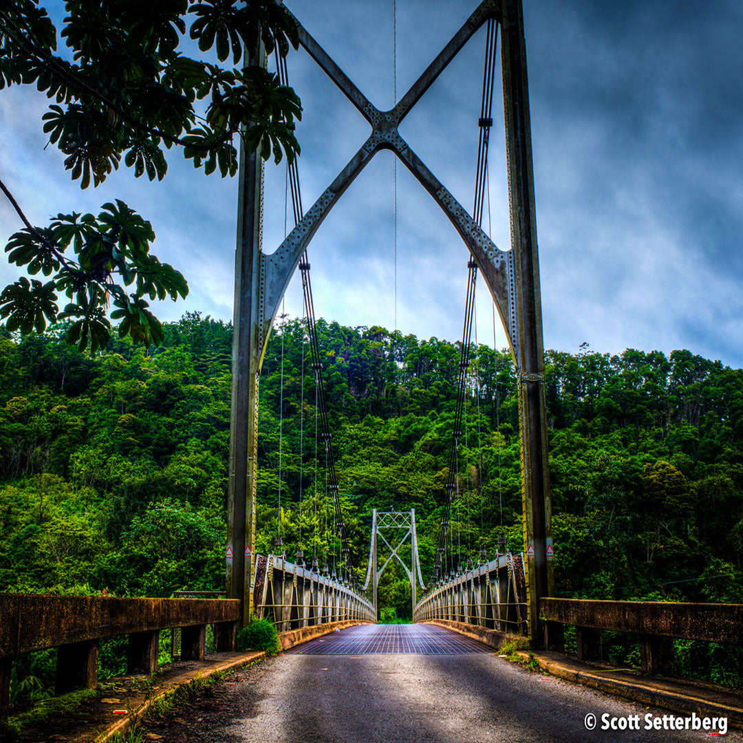 Jungle Bridge in Costa Rica
