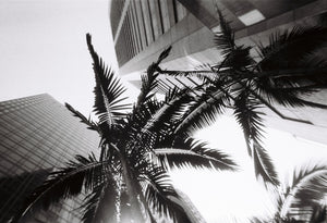 Lomography Simple Use Film Camera Black and White Disposable