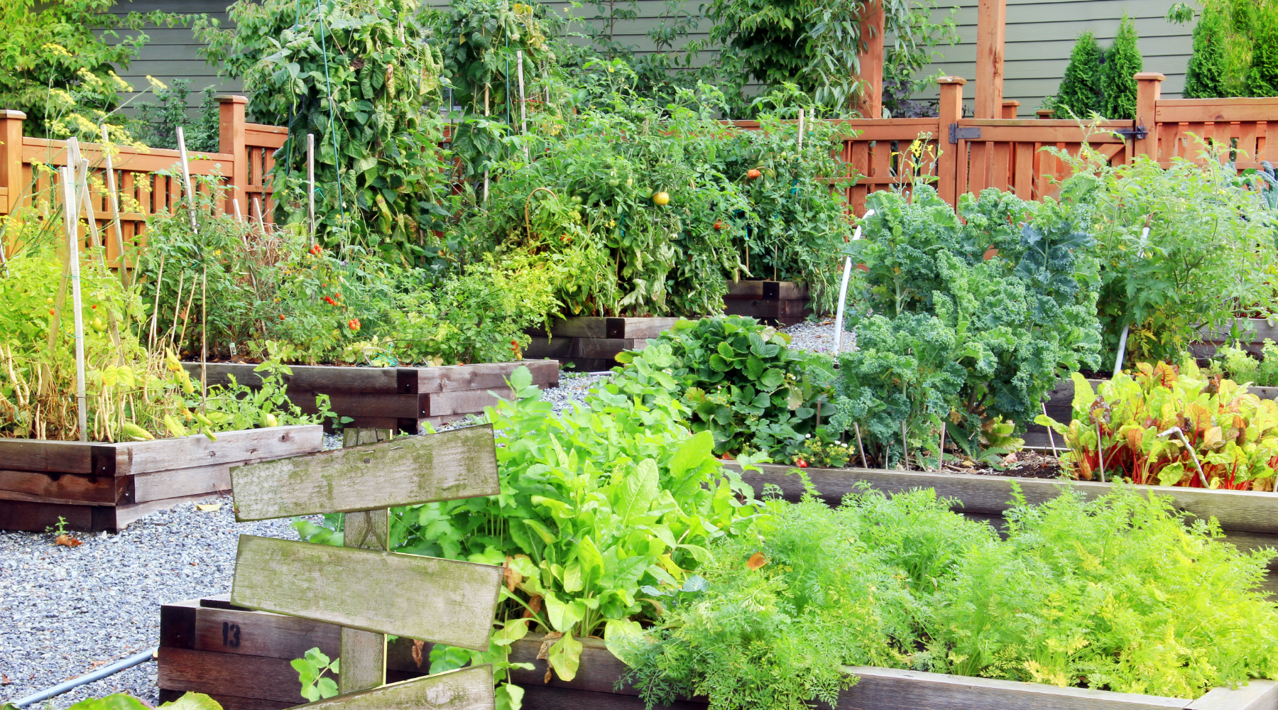 8 Benefits of Community Gardens
