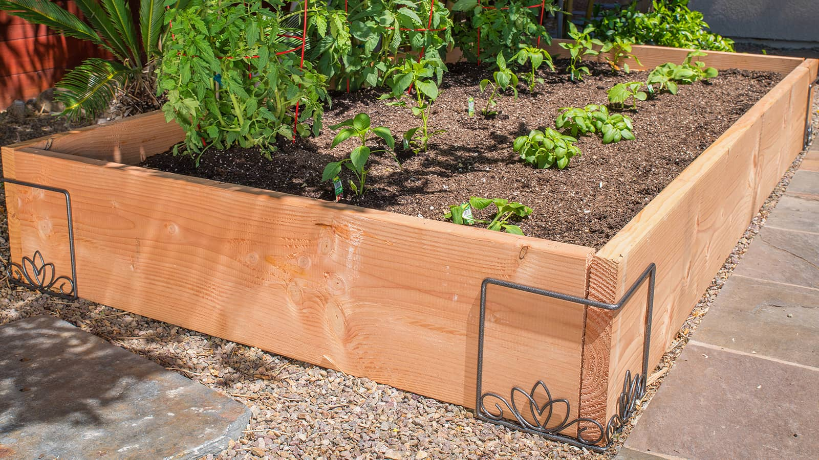 Best Methods for Raised Bed Gardening