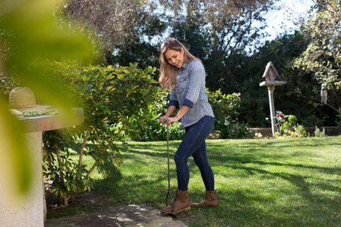 Edge your lawn for cleaner walkways