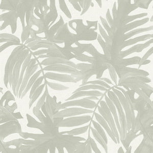 Wallpaper Monstera Island Sage