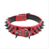 Spiked Collar - 3 Row