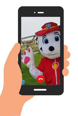 PRE- RECORDED BIRTHDAY VIDEO MESSAGE - 1 mascot (personalised)