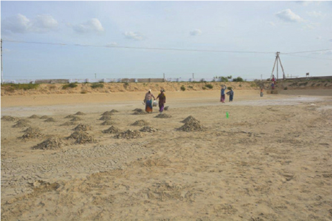 Pond drying and cleaning in aquaculture