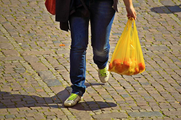 plastic shopping bag being used as a reusable shopping bag