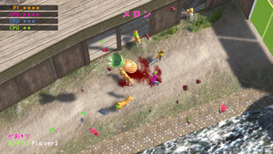 Nippon Marathon Screenshot 5