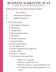 Create Your Business Plan Template - Iconic Style Inc