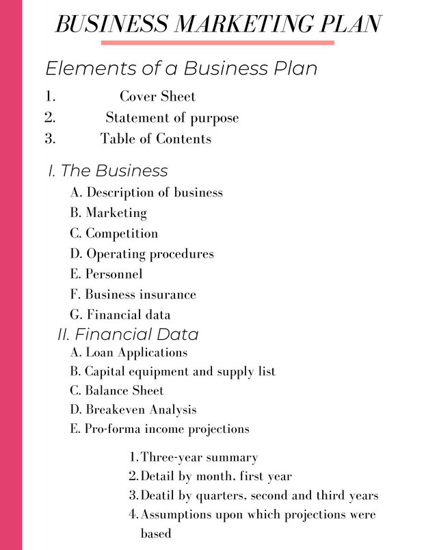 Create Your Business Plan Workbook - Iconic Style Inc.