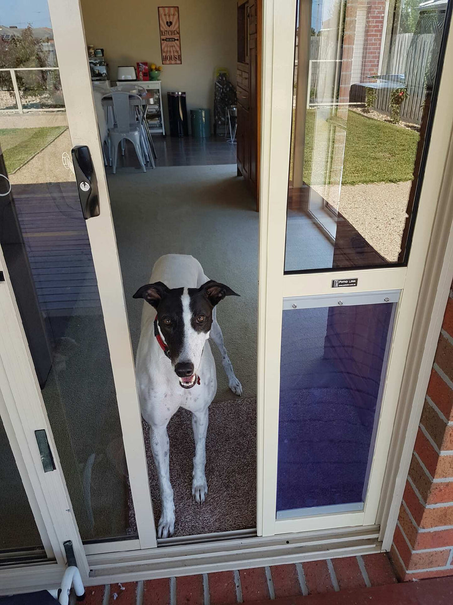 6 Greyhound Pet Door Insert For A Sliding Door Patio