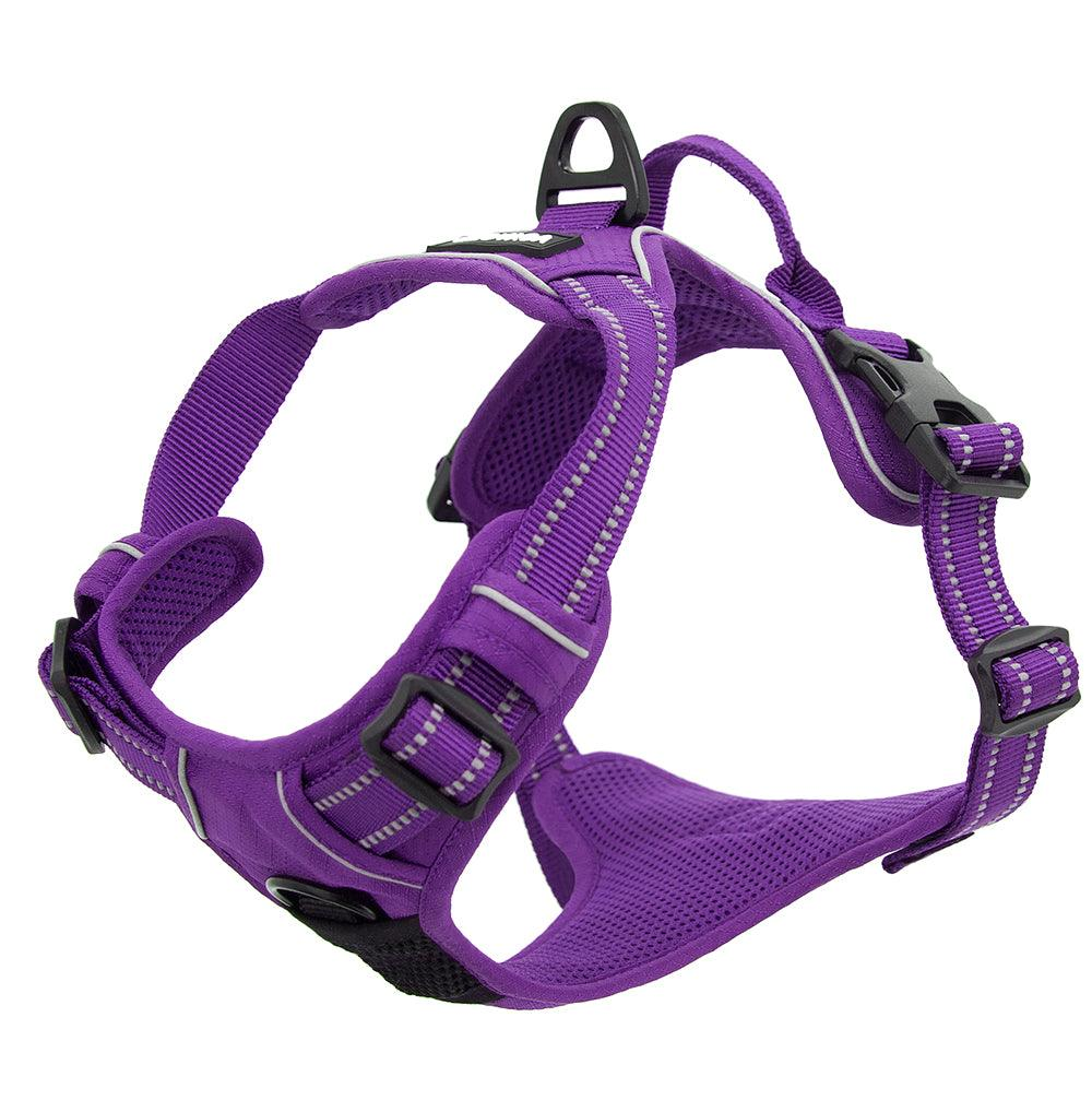 VOYAGER Dual-Attachment Dog Harness in Purple - Expanded