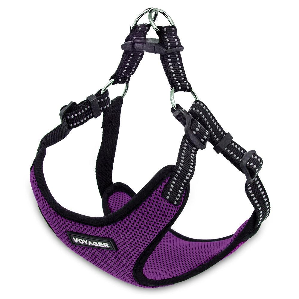 VOYAGER Step-In Flex Dog Harness in Purple - Expanded
