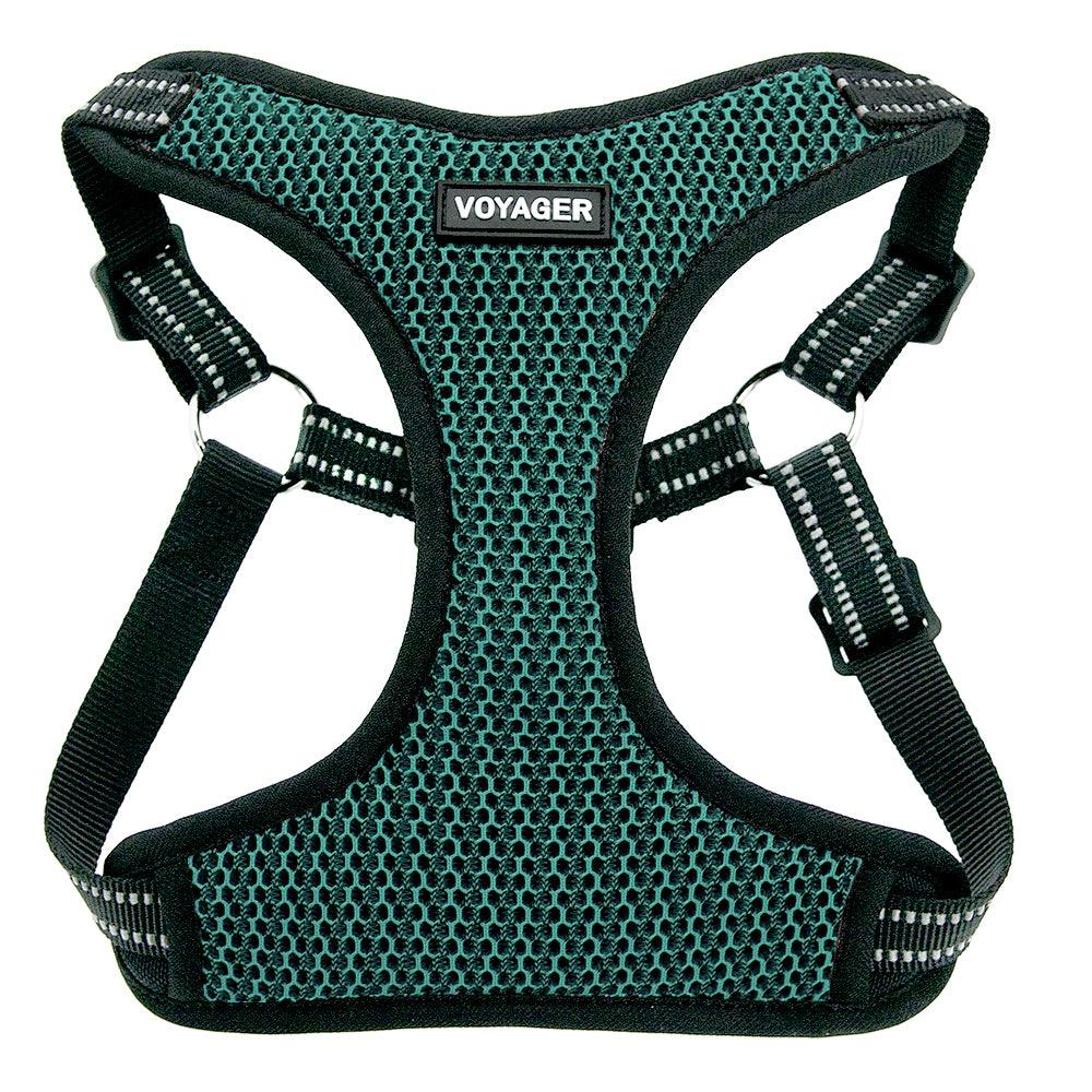 VOYAGER Two-Tone Step-In Flex Dog Harness in Turquoise - Front