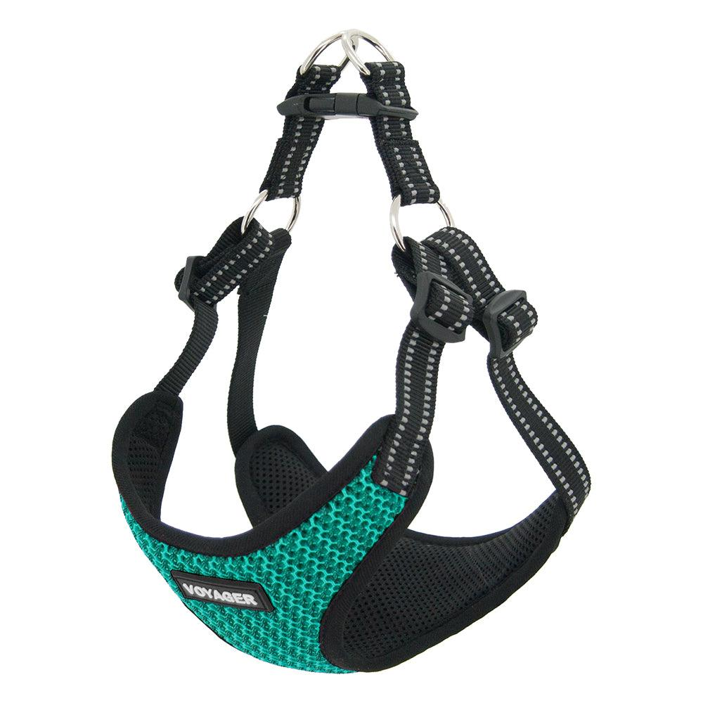VOYAGER Two-Tone Step-In Flex Dog Harness in Turquoise - Expanded
