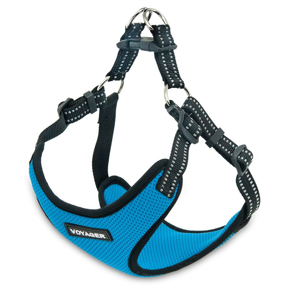 VOYAGER Step-In Flex Dog Harness in Turquoise - Expanded