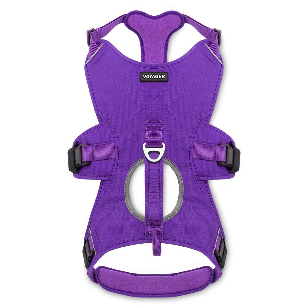 VOYAGER Control Dog Harness in Purple - Front