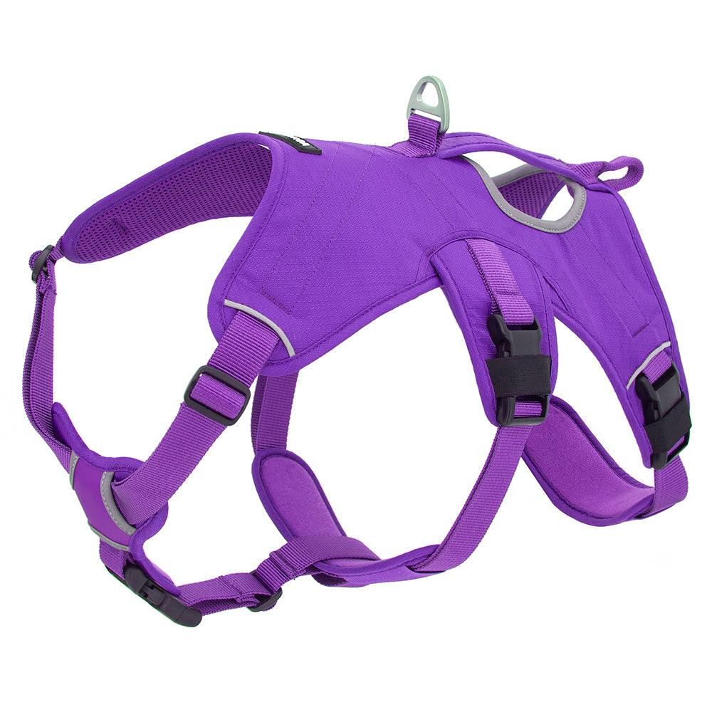 VOYAGER Control Dog Harness in Purple - Expanded